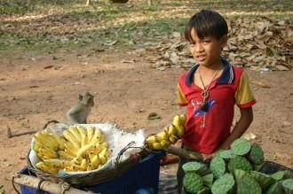 Am Wegesrand: Beim internationalen Wettbewerb verkaufen Kinder Obst