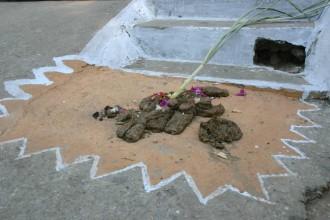 Geschmückte Rinderscheiße in Udaipur