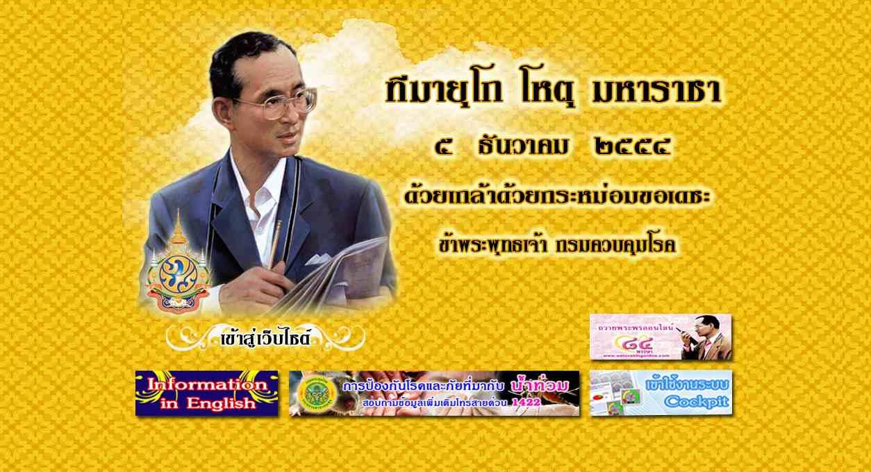 Ausschnitt der Startseite der Internetpräsenz von http://www.ddc.moph.go.th/