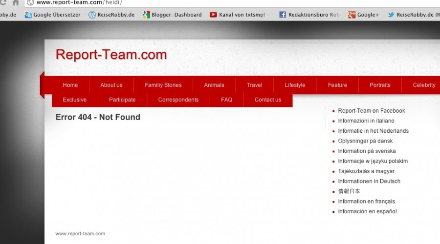 Error beim Report-Team