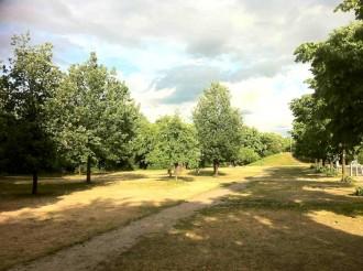 Stille und Ruhe im Görlitzer Park