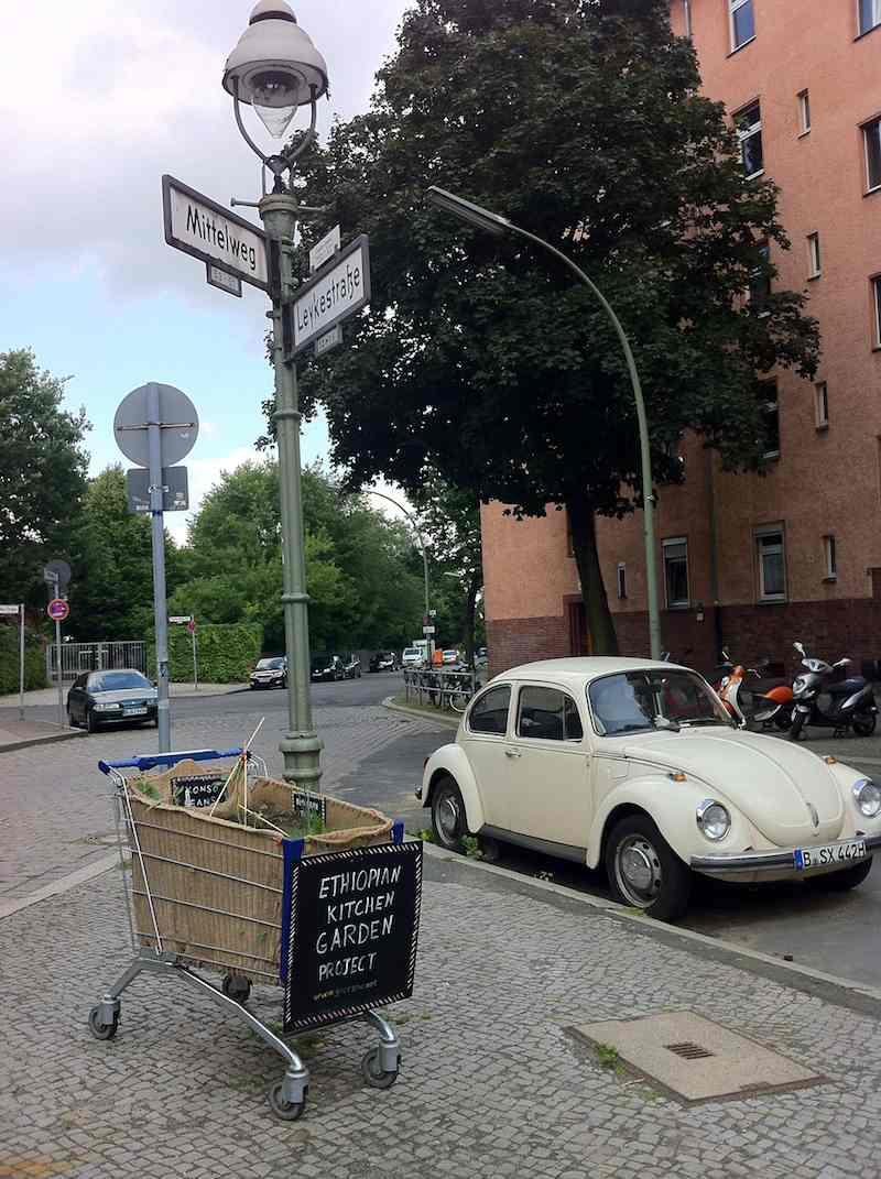 Nahaufnahme der Verkehrsinsel Mittelweg Ecke Leykestraße mit Garten und Käfer am 10.Juli 2013