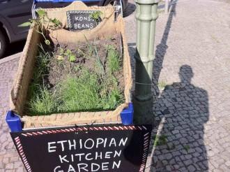 Äthiopischer Küchengarten in Neukölln