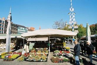 Auf dem Münchner Viktualienmarkt am Blumenstand