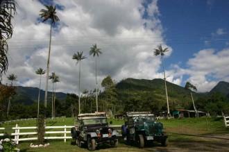 Jeeps warten auf die Heimfahrt