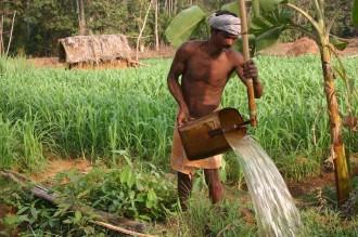 Am Rande des Farmer-dorfs Ashoke