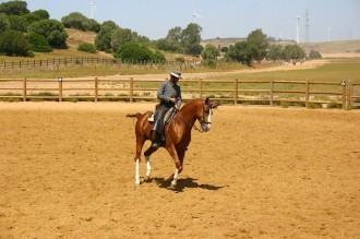 Strom und Pferde in Andalusien.