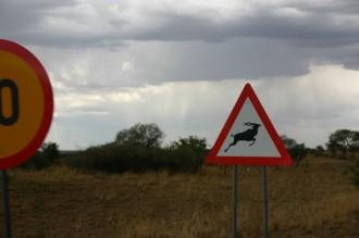 zieren auch Oryx die Warnverkehrsschilder