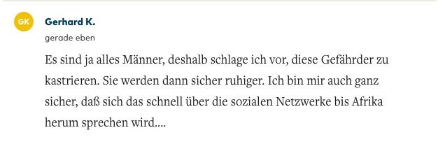 Rassistisch hetzerischer User-Kommentar zu einem Welt.de-Artikel