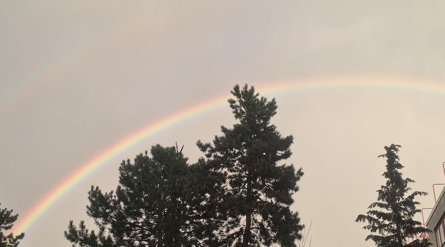 Danke Klaus: Regenbogen übern Rollberg in Neukölln
