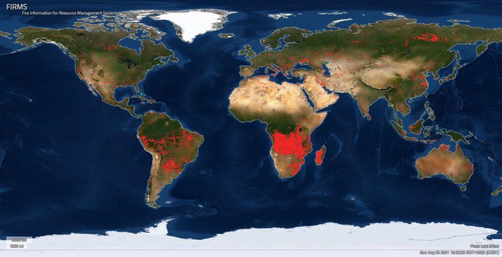 Nasa-Seite zeigt alle Feuer auf der Welt der letzten 24 Stunden