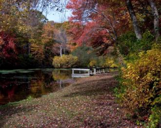 """Besonders empfehlenswert ist eine Wanderung durch das """"Caleb Smith State Park Preserve""""."""