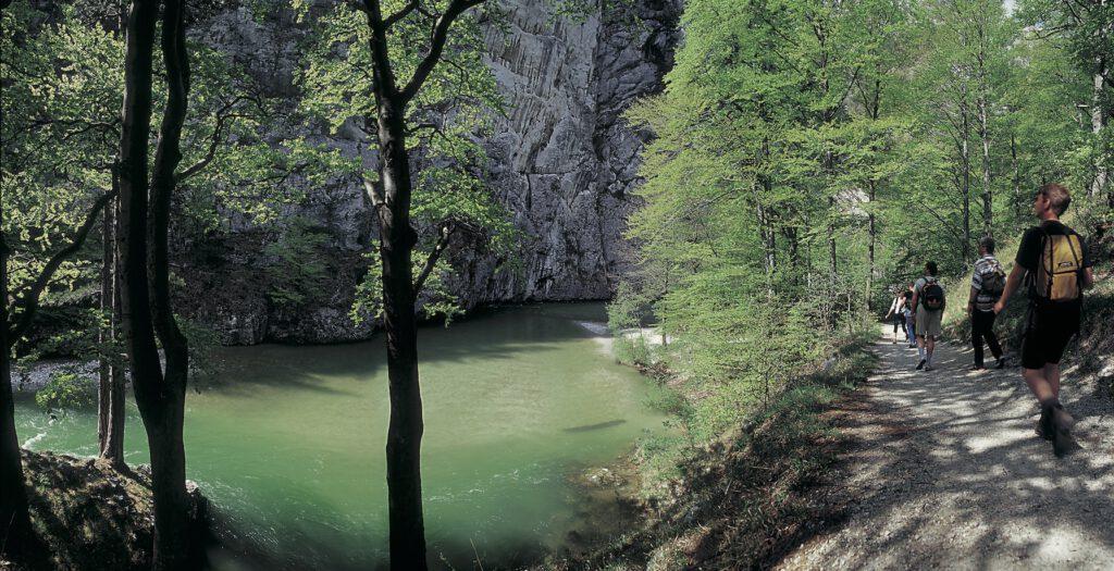 Wandern im wasserreichen Höllental bei Simmerin in Niederösterreich