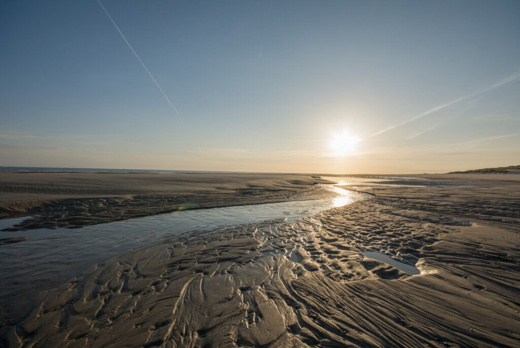 Im Naturschutzgebiet Wattenmeer fließt ein Priel im Licht der untergehenden Sonne auf der Nordseeinsel Spiekeroog.