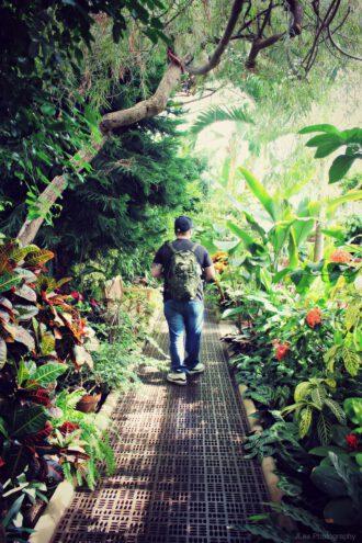 """Besucher der botanischen Gärten auf Long Island Arboretum """"Planting Fields"""""""