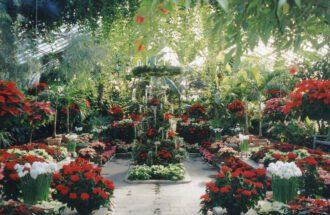 """Im Arboretum """"Planting Fields"""" finden Besucher vor allem im Herbst eine farbenfrohe Pflanzensammlun"""
