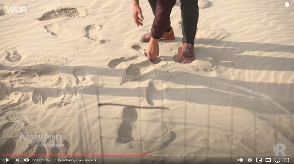 Kleinteiliger Plastikmüll im feinen Sand vom Strand in St. Peter Ording