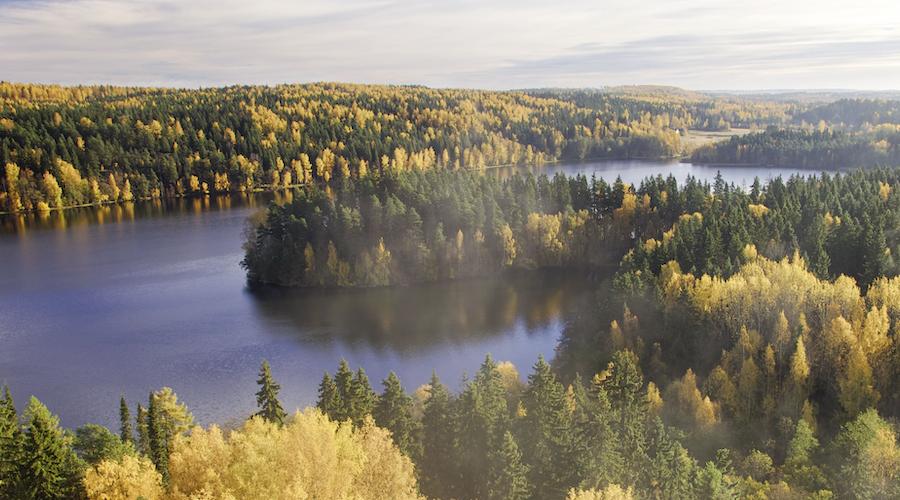 Ruska: Weite Natur in Finnland im Herbst