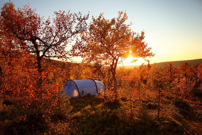 Ruska heißt der bunte Herbst in Finnland
