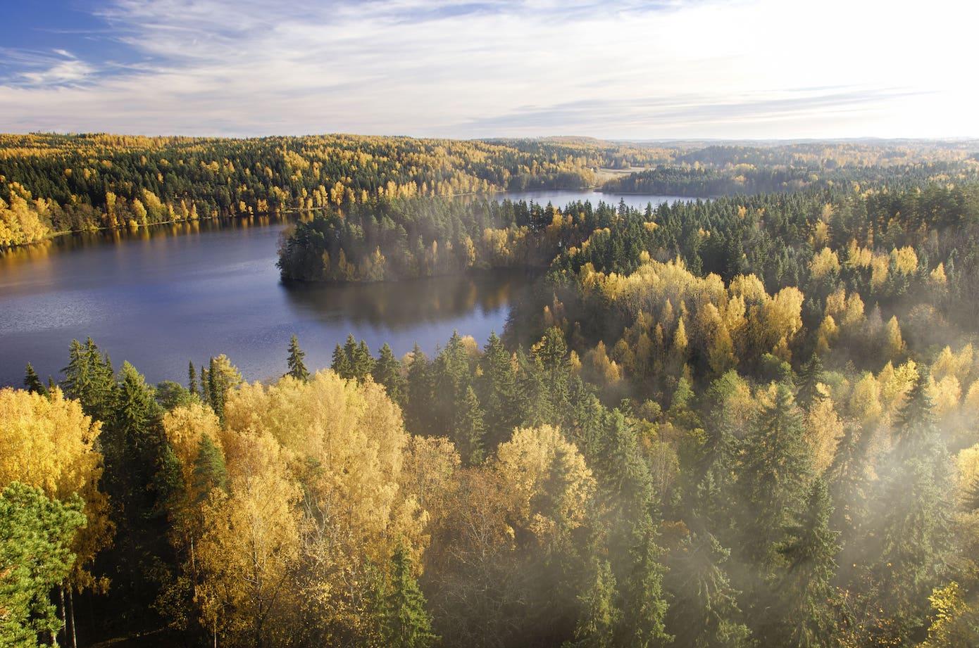 Die finnischen Seenplatten umgeben von unendlich wirkenden Wäldern